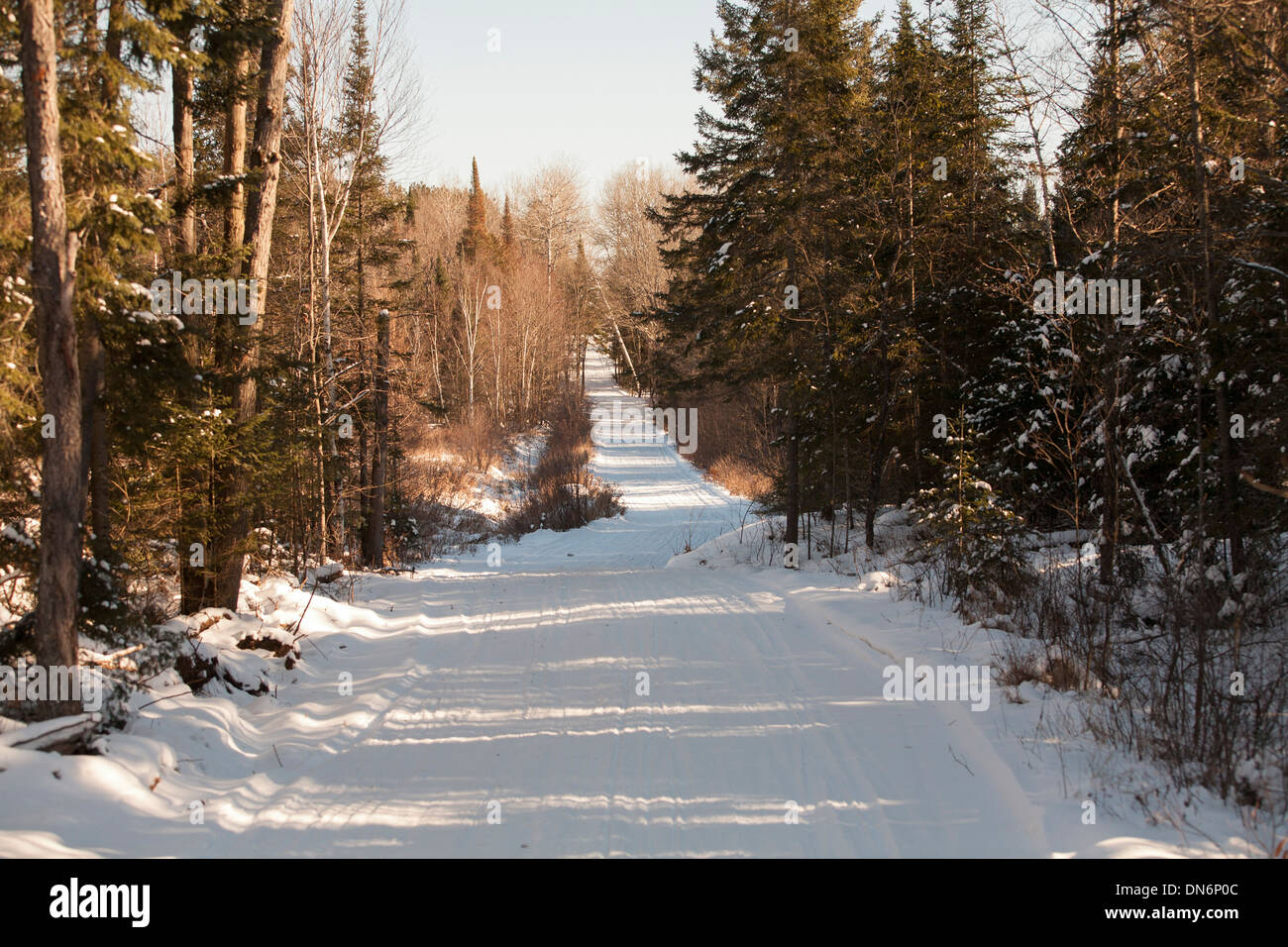 Snowmobile trail through the woods - Stock Image