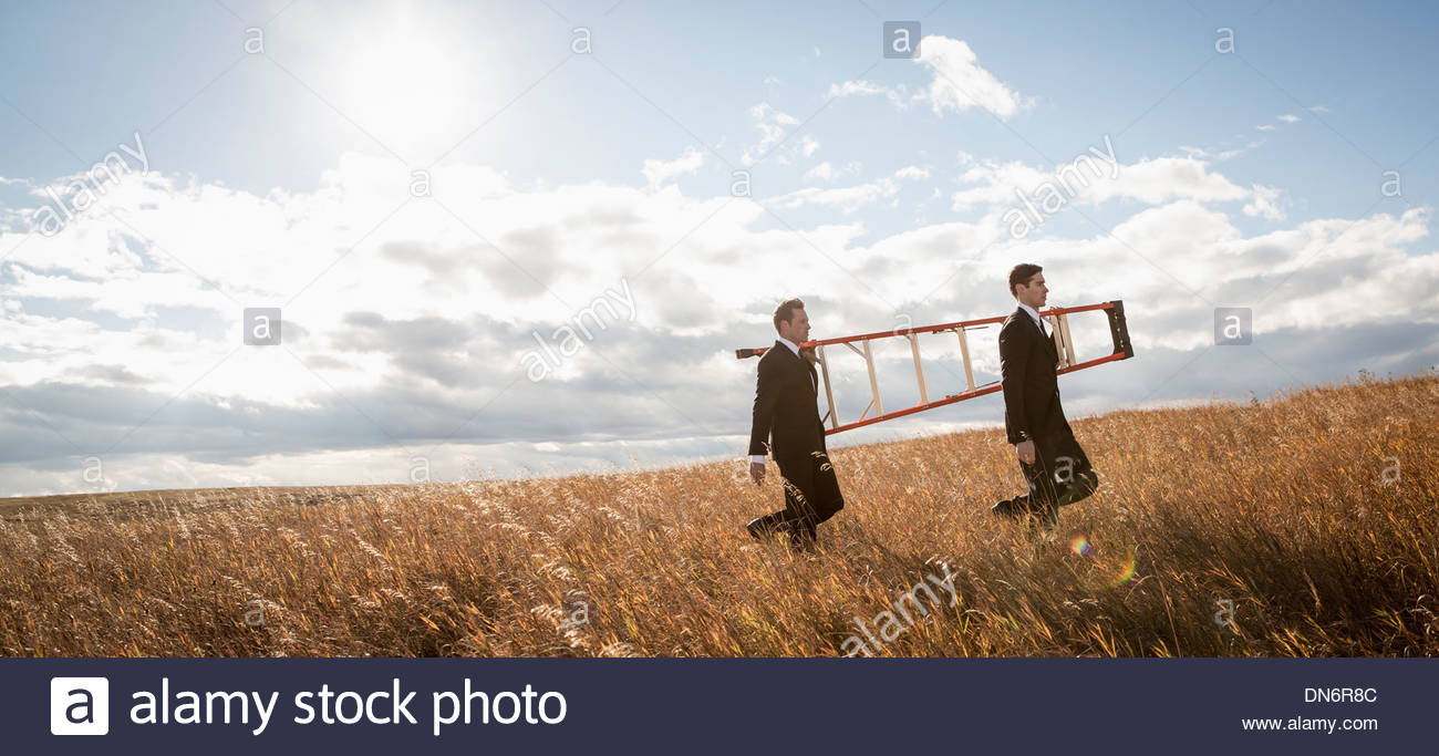 Businessmen with step ladder walking through field - Stock Image