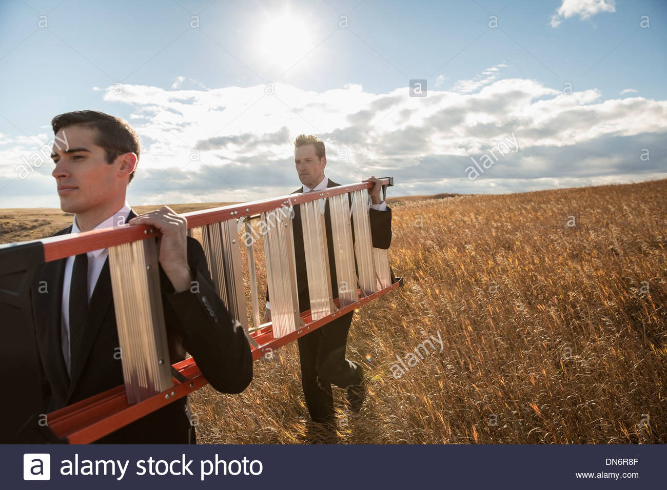Businessmen carrying step ladder on field - Stock Image