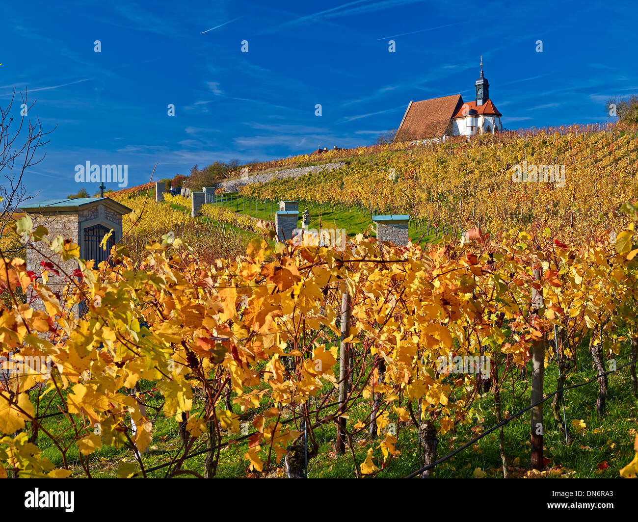 Church of Maria im Weingarten, Volkach on the Main, Lower Franconia, Bavaria, Germany - Stock Image