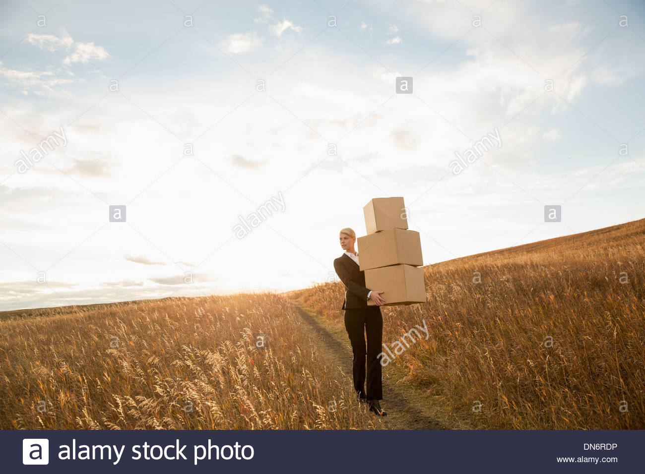 Businesswoman with stacked boxes walking through field - Stock Image