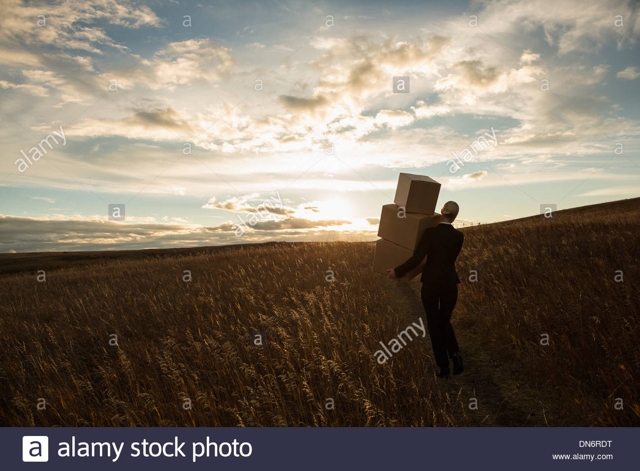 Businesswoman with stacked boxes walking through field at dusk - Stock Image