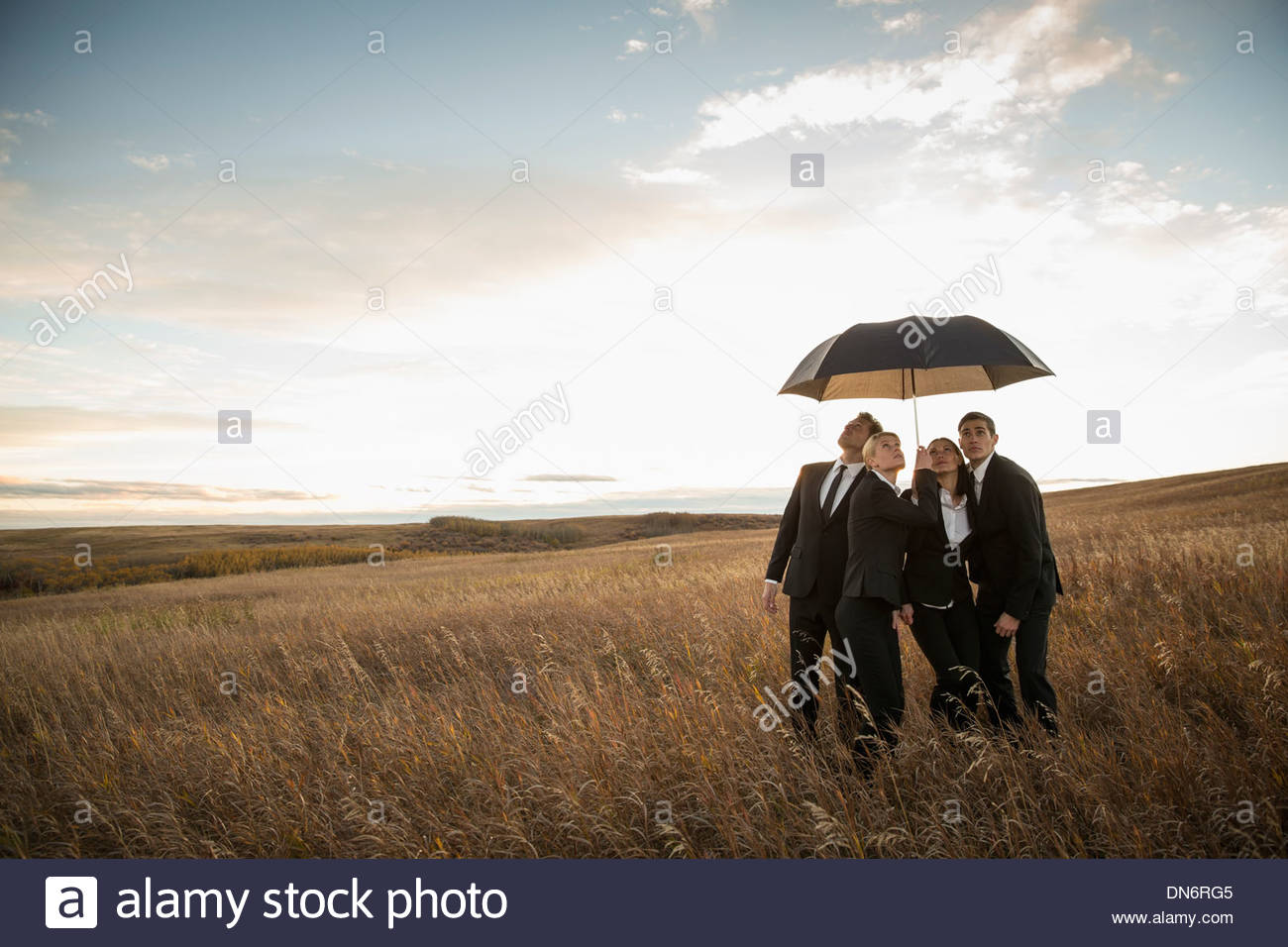 Business people standing under umbrella on field - Stock Image