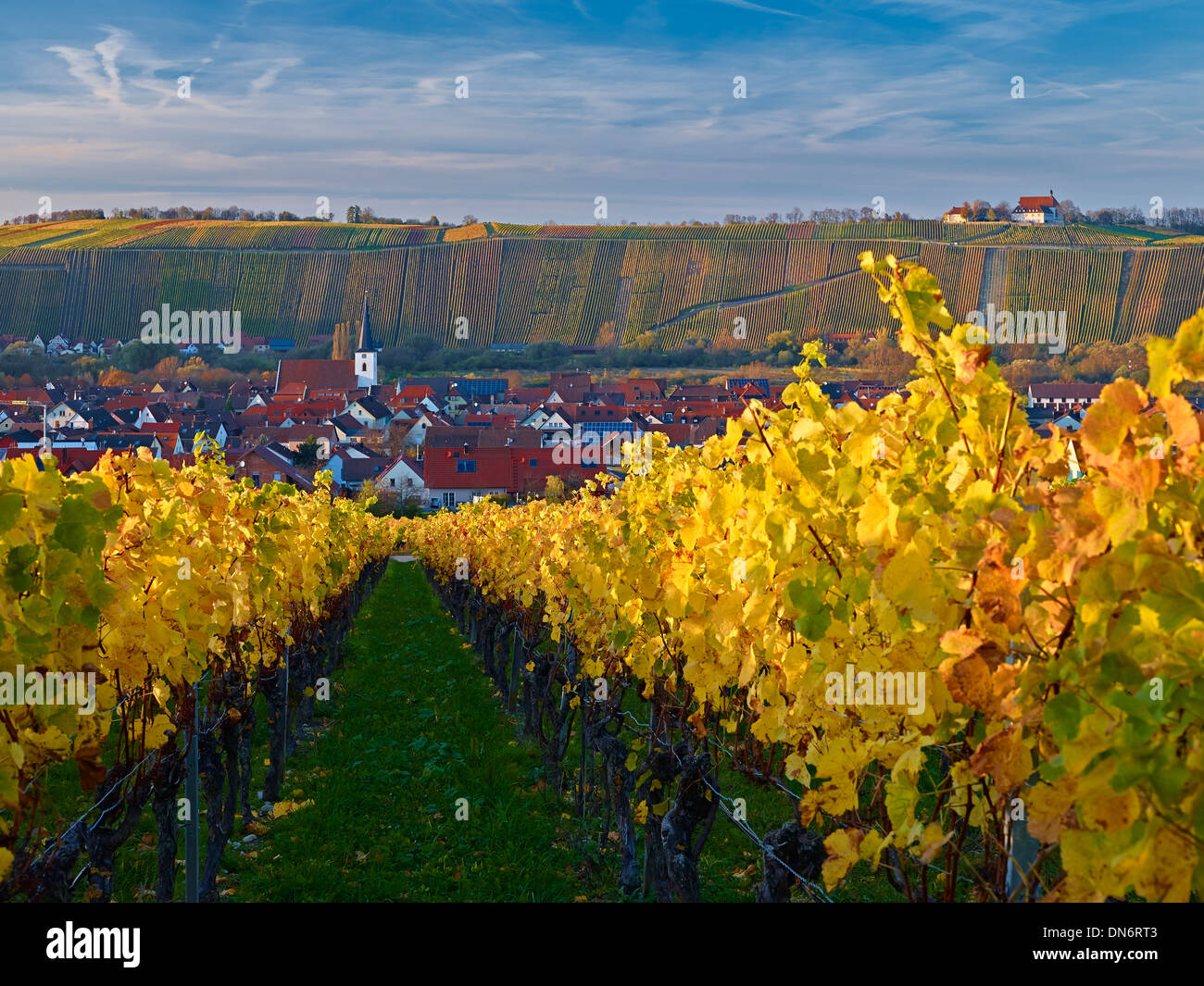 View over vineyards to Nordheim with Vogelsburg monastery at Volkach, Franconia, Bavaria, Germany - Stock Image