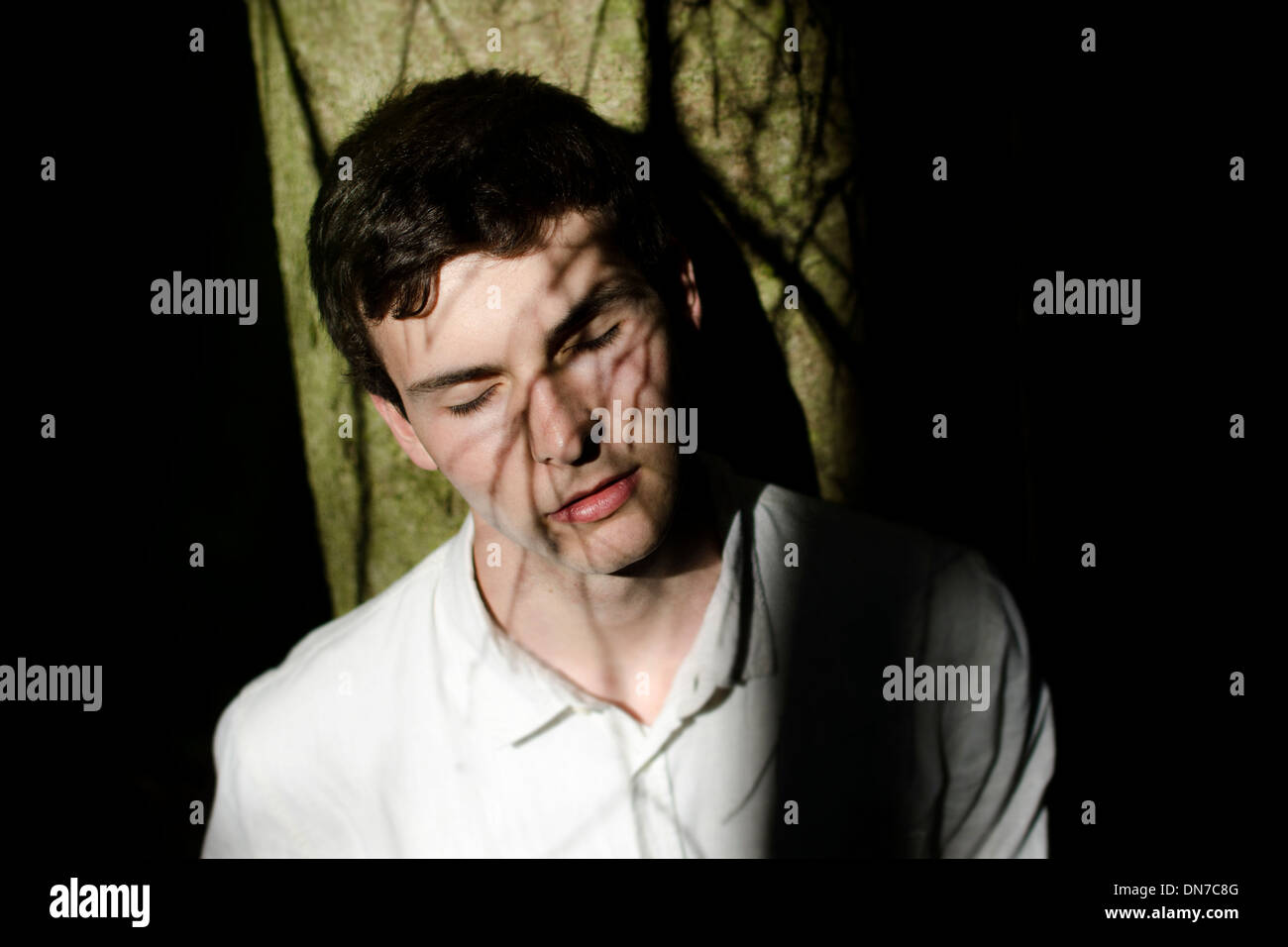 Young man with shadow of tree branches in the face Stock Photo