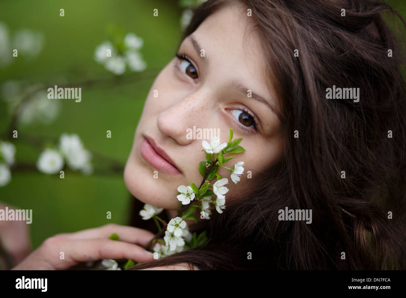 Girl with cherry blossoms, portrait - Stock Image