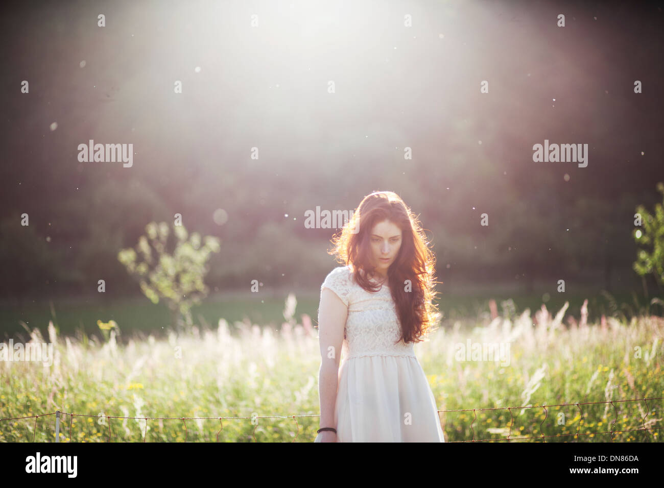 Young woman standing on a meadow in backlight, portrait - Stock Image
