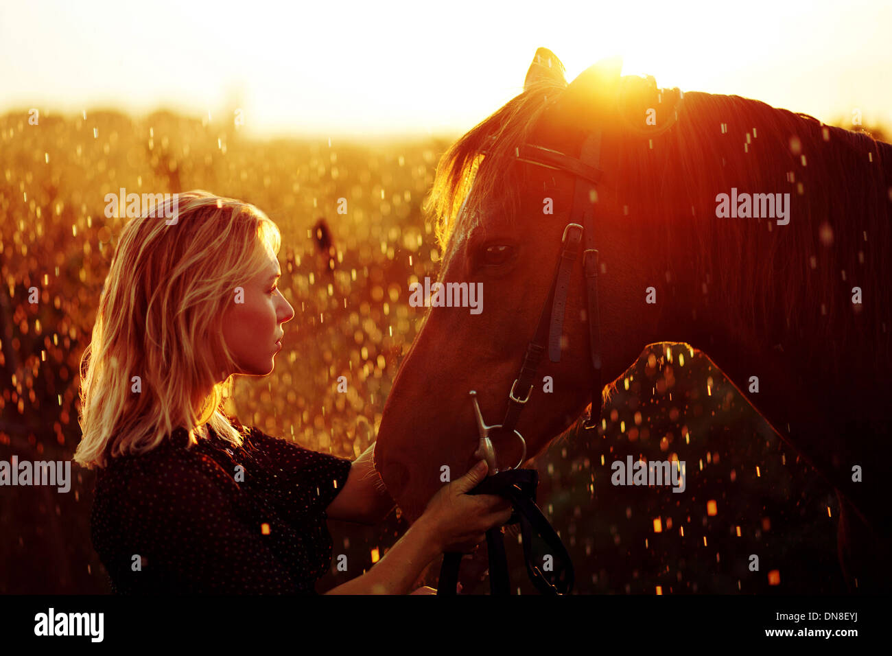 Woman with horse at sunset - Stock Image