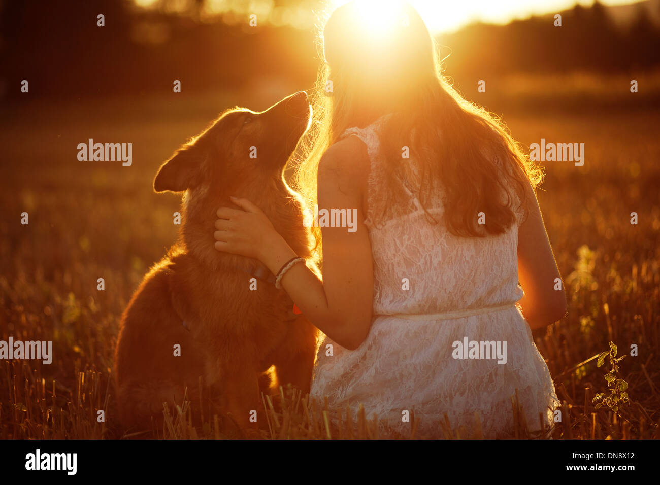 Woman with dog sitting on a meadow at sunset - Stock Image