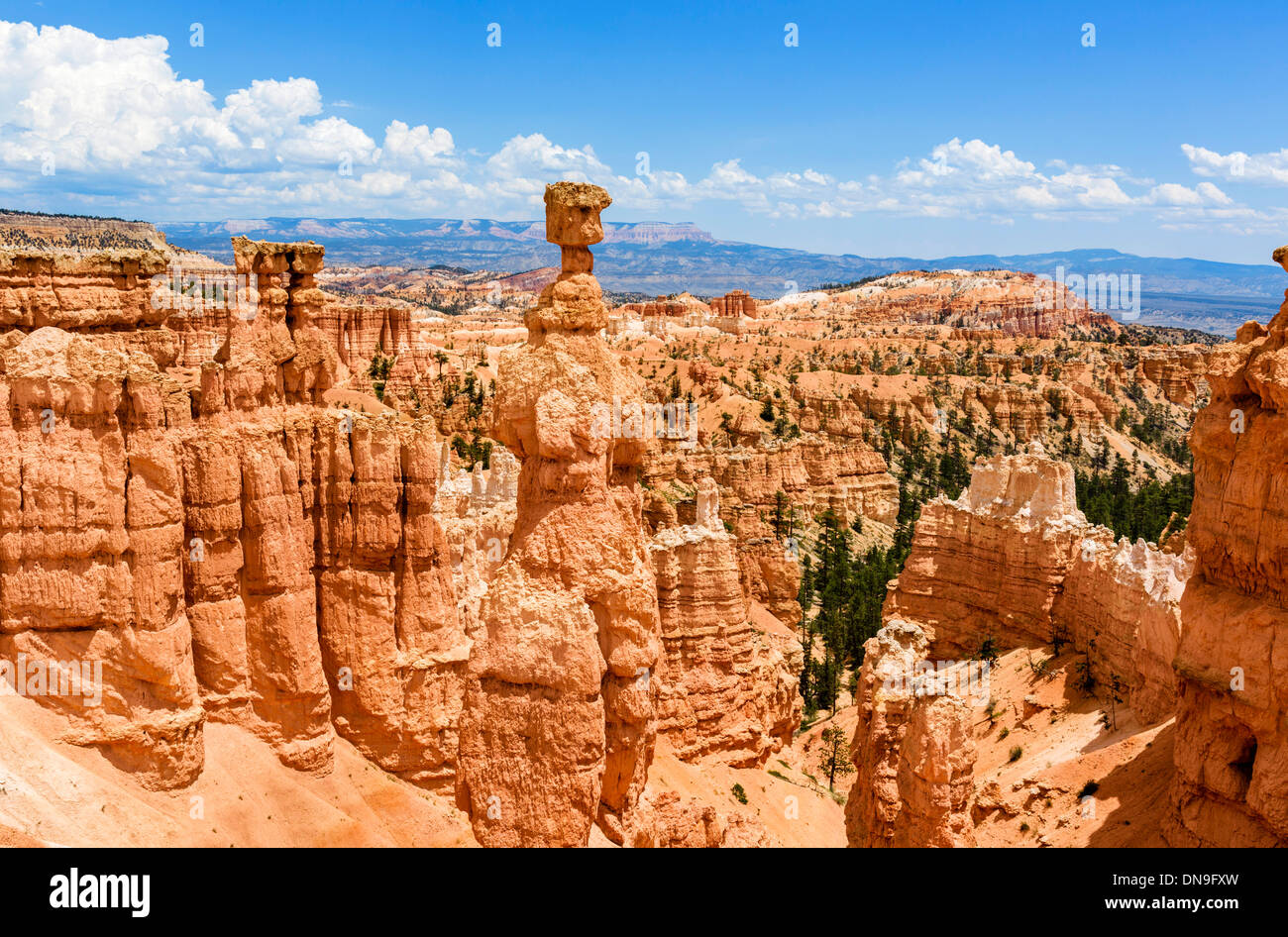 Thors Hammer monolith on the Navajo Loop Trail, Sunset Point, Bryce Amphitheater, Bryce Canyon National Park, Utah, USA - Stock Image