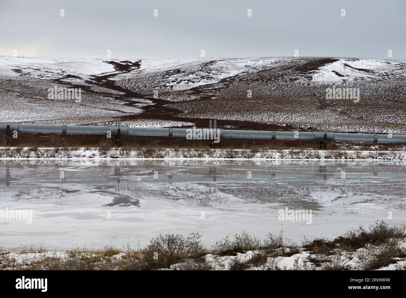 Alyeska elevated Trans Alaska crude oil pipeline passing hills and pond north of the Brooks Range mountains from the Dalton Highway Alaska USA - Stock Image