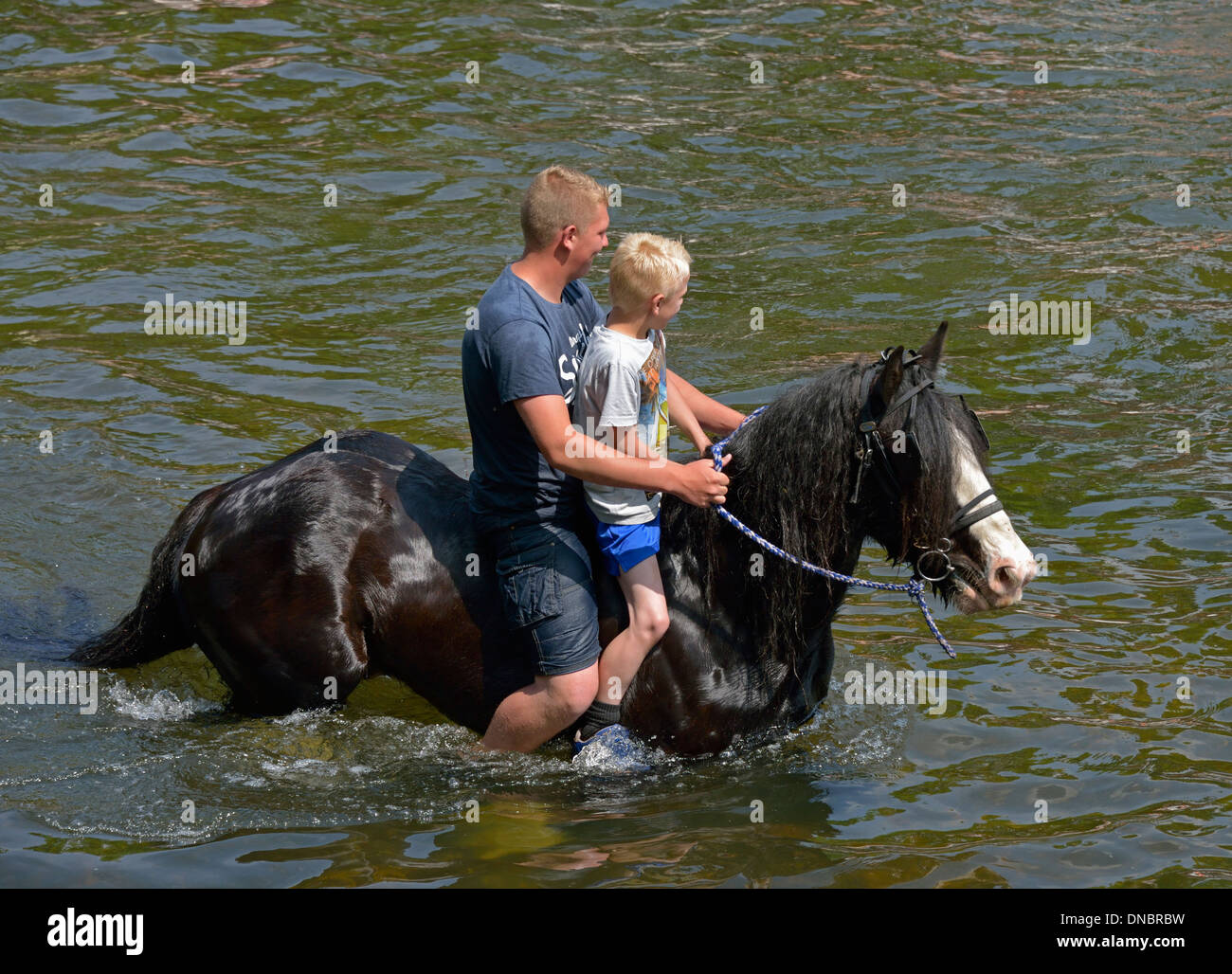 Gypsy travellers riding horse in River Eden. Appleby Horse Fair, Appleby-in-Westmorland, Cumbria, England, United Kingdom. - Stock Image
