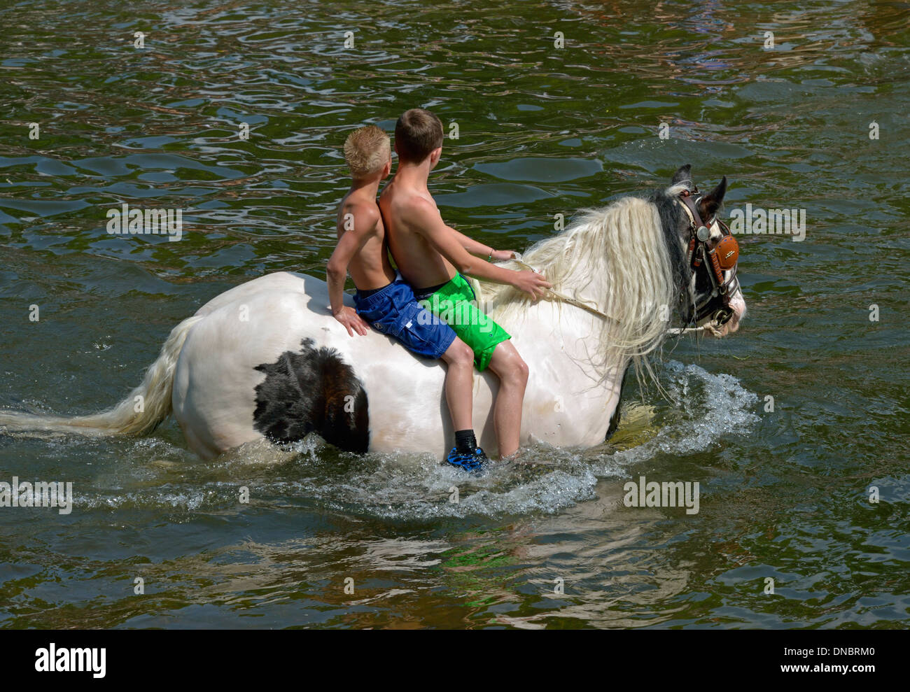 Gypsy traveller boys riding horse in River Eden. Appleby Horse Fair, Appleby-in-Westmorland, Cumbria, England, United Kingdom. - Stock Image