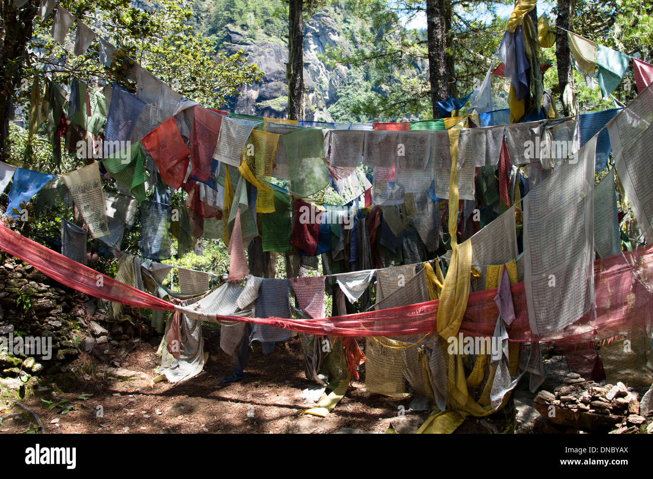 Prayer flags along the trail going to Taktsang monastery - Stock Image