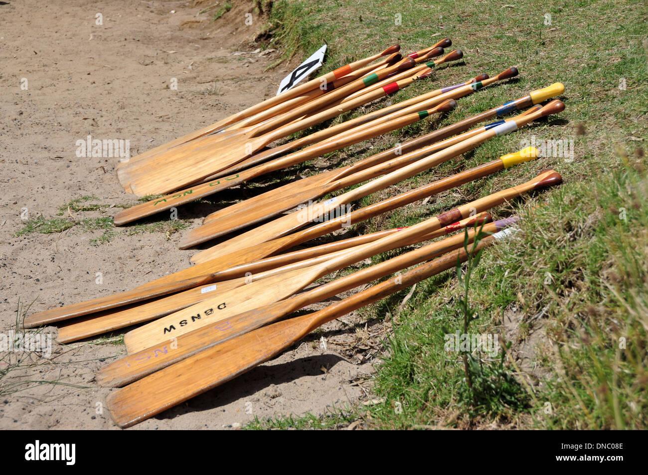 Chinese Dragon Boat Races Oars place on Lake Bank - Lake Albert New South Wales Australia - Stock Image
