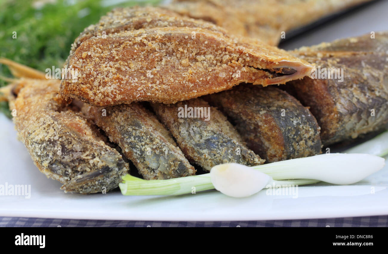 Closeup of uncooked preserved Ilish fish with vegetables - Stock Image