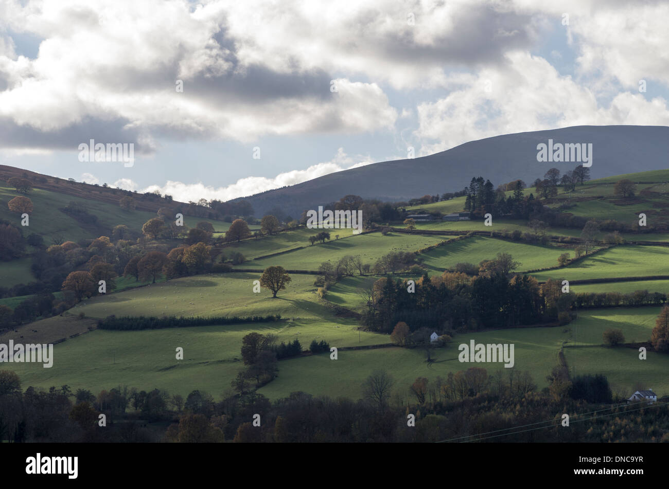 Valley of the river Usk, near Talybont, Powys, Wales, UK - Stock Image