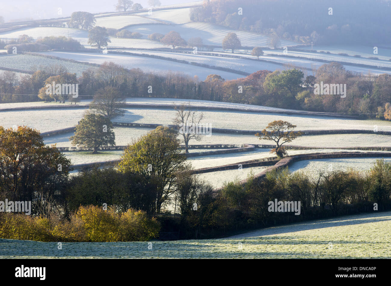 Frosty fields with autumn colour in the Brecon Beacons, Wales, UK. - Stock Image