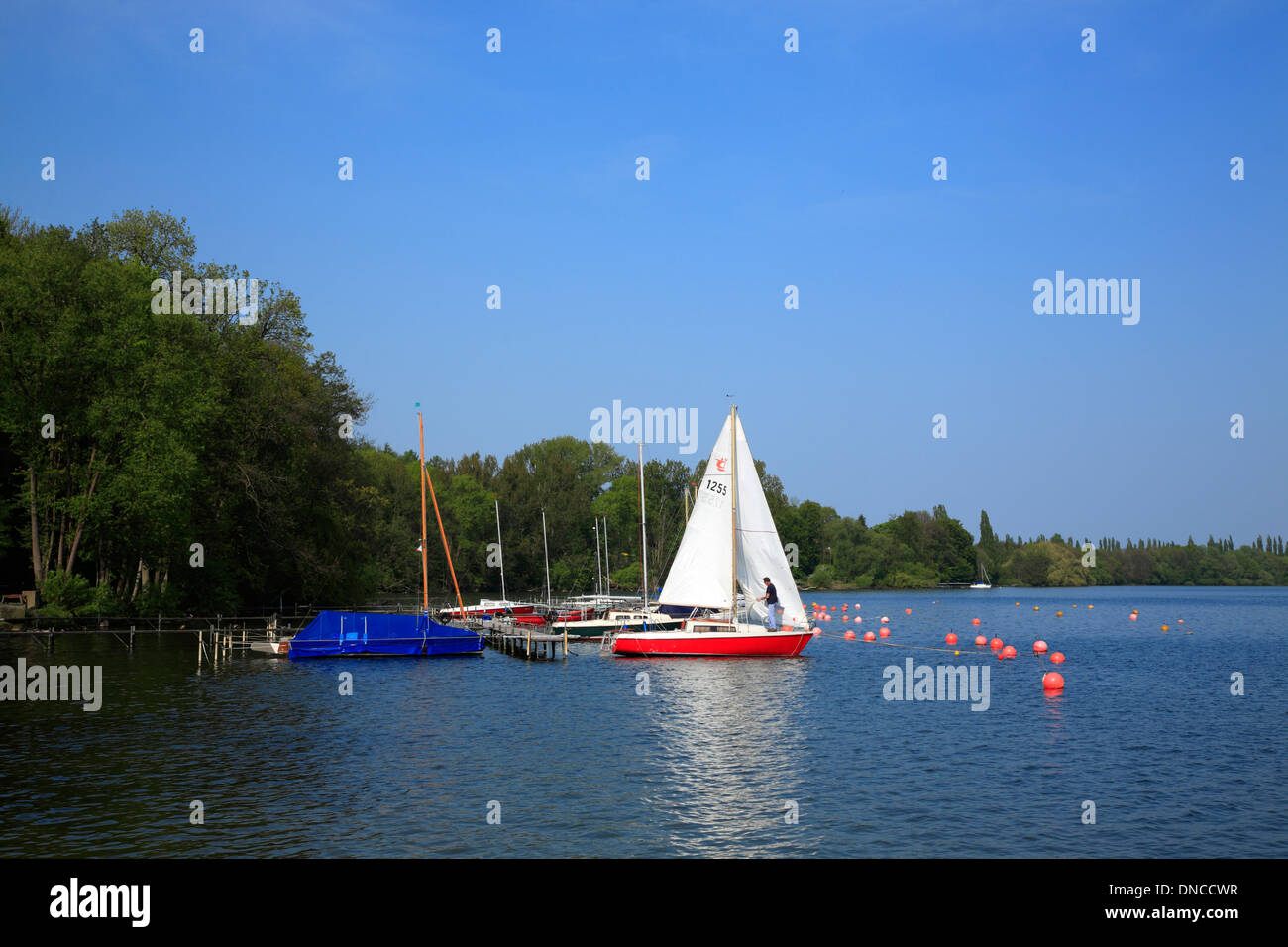 Ascheberg   at Lake Ploen (Ploener See), Holsteinische Schweiz, Schleswig-Holstein, Germany, Europe - Stock Image