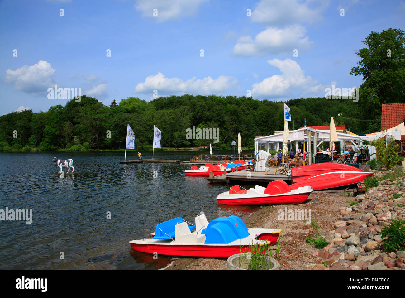Malente-Gremsmuehlen, boats for rent, Holsteinische Schweiz, Schleswig-Holstein, Germany, Europe - Stock Image