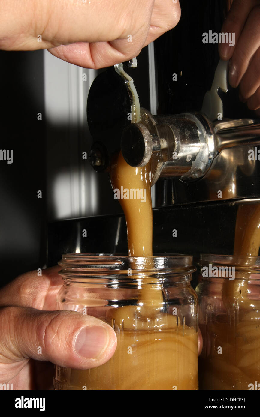 Filling of creamy stirred honey into jars by hand. Photo: Klaus Nowottnick Date: June 17, 2011 - Stock Image
