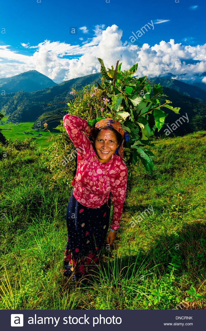 A local woman walking along a ridge above the Pokhara Valley, Nepal at Bimirapani. - Stock Image