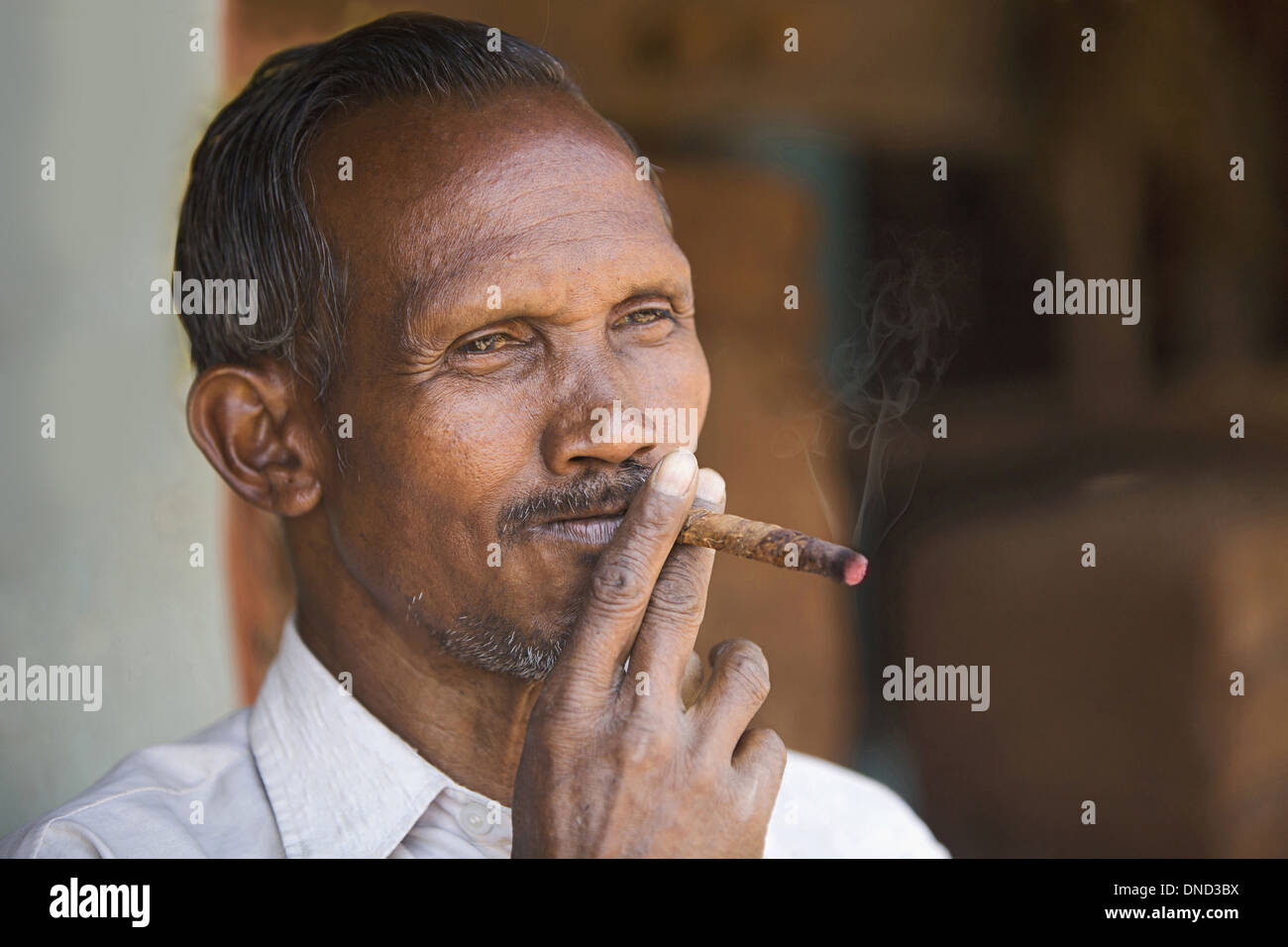 Close-up of a tribal man smoking bidi, an Indian handmade cigarette made of tobacco or beedi leaves, Orissa, India - Stock Image