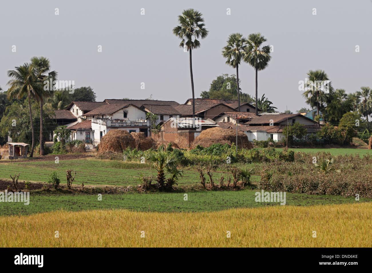 Tribal village settlement. Bhil tribe, Zabua district, Madhya Pradesh, India. - Stock Image