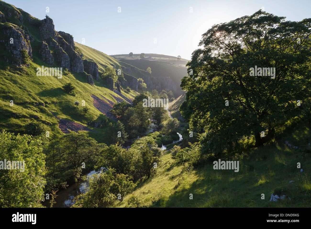 Wolfscote Dale, Dove Valley, Peak District National Park, Derbyshire - Stock Image