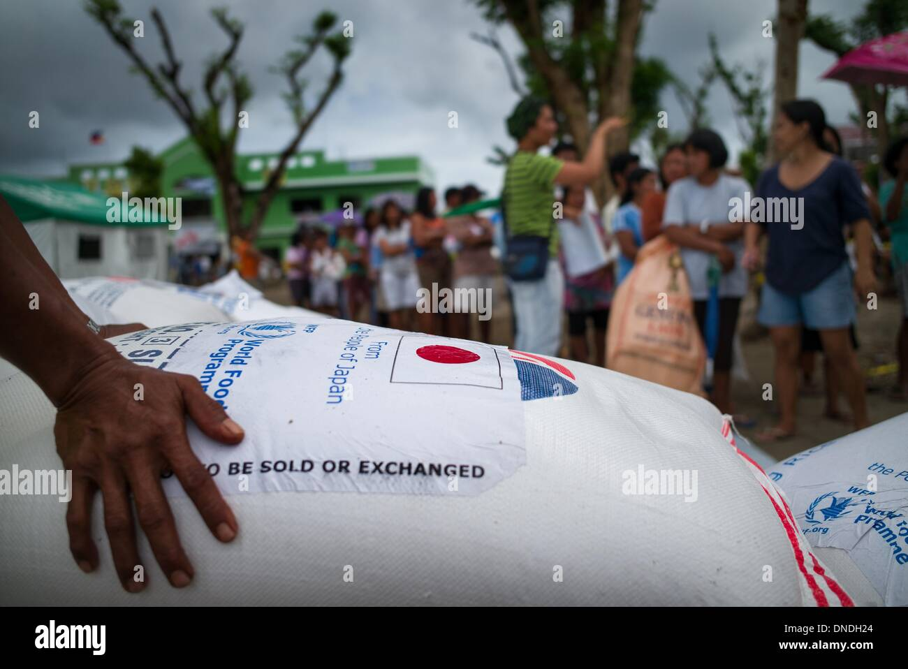 Tolosa Leyete Philippines 23rd Dec 2013 Survivors Of Typhoon Stock Photo Alamy