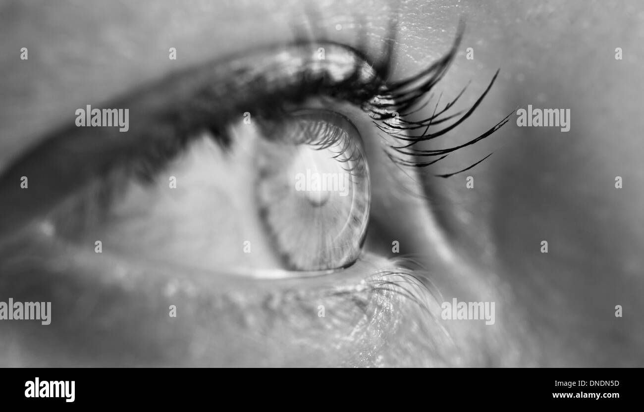 Black and white closeup of a female human eye