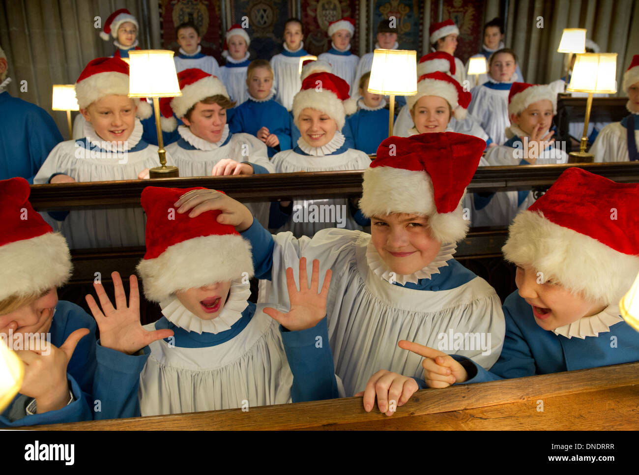 The choir of Wells Cathedral in Christmas garb - Stock Image
