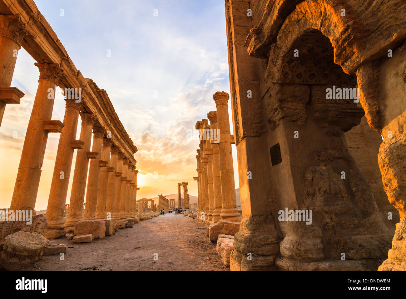 Great Colonnade at sunset. Palmyra, Syria - Stock Image