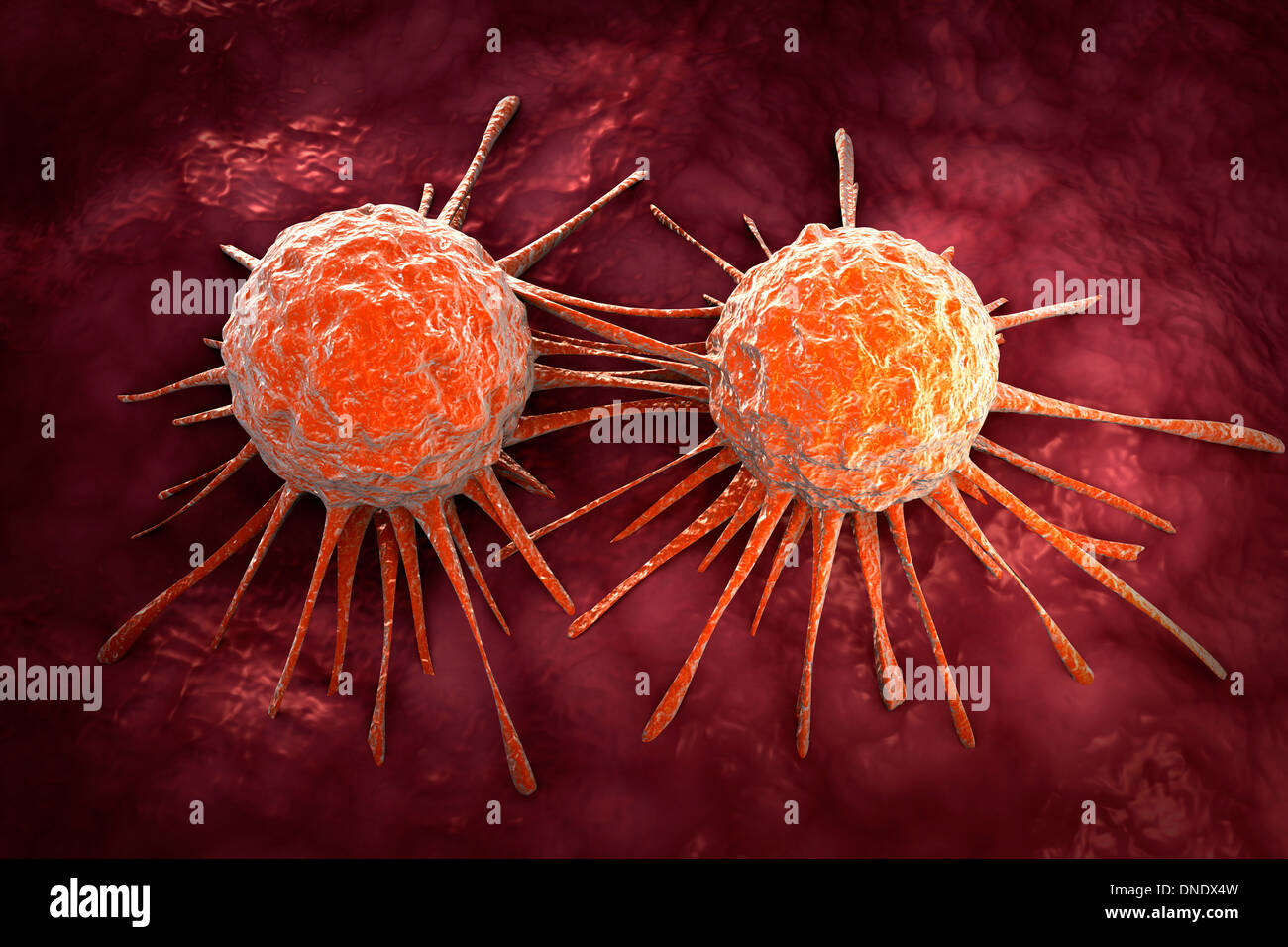 Conceptual image of cancer virus. Stock Photo
