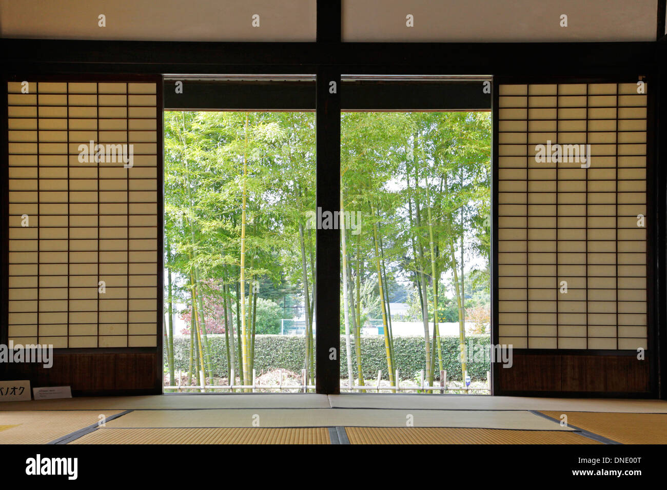 Old Japanese garden view room with sliding shoji doors Tokyo Japan & Old Japanese garden view room with sliding shoji doors Tokyo Japan ...
