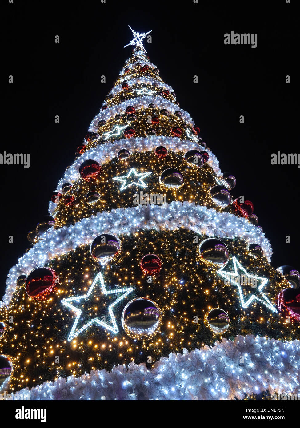 giant outdoors christmas tree illuminated at the evening night against dark blue sky stock image - Giant Outdoor Christmas Decorations