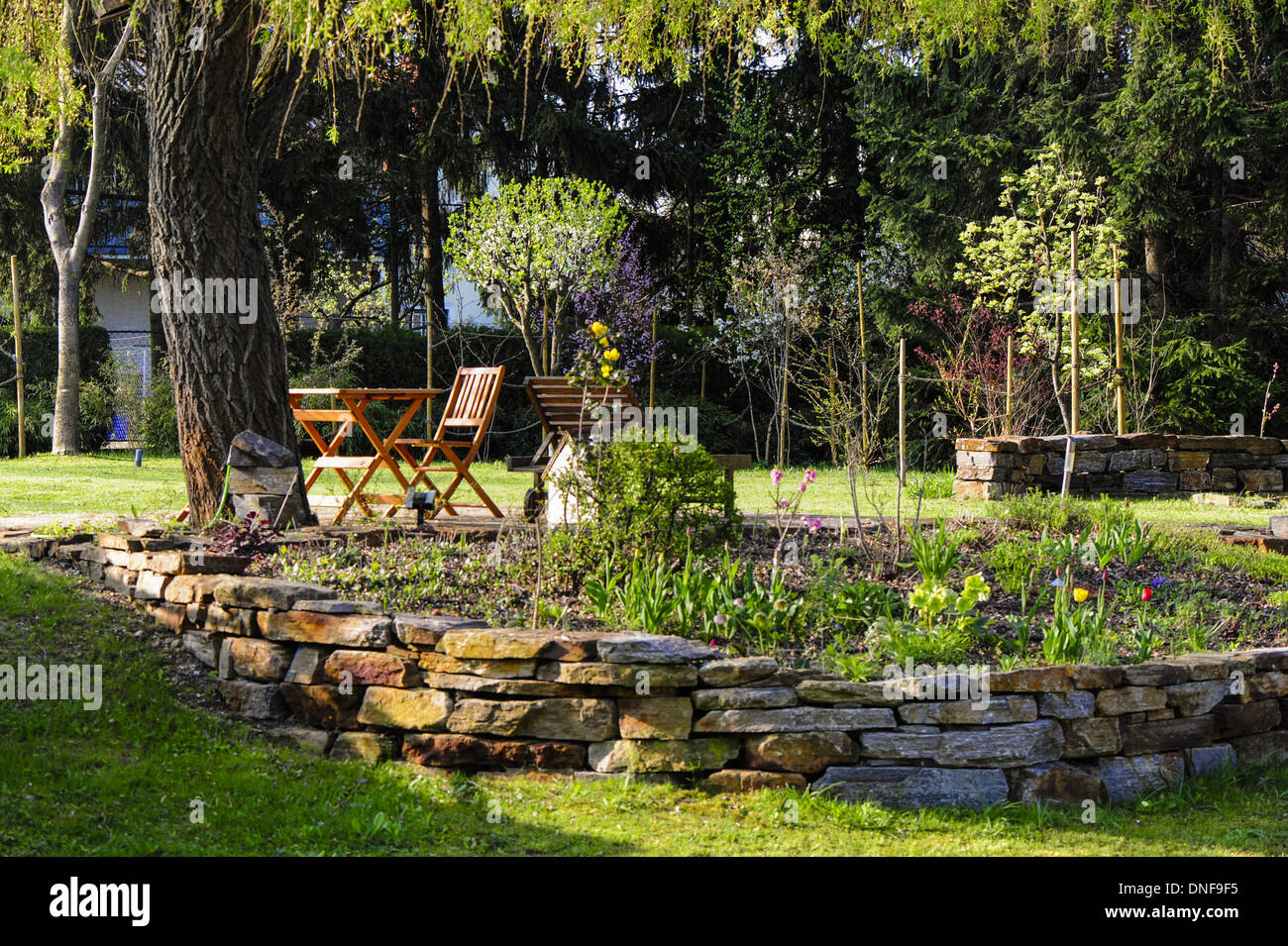 garden in spring time, Austria, Lower Austria, Southern Lower Austria, Eggendorf - Stock Image