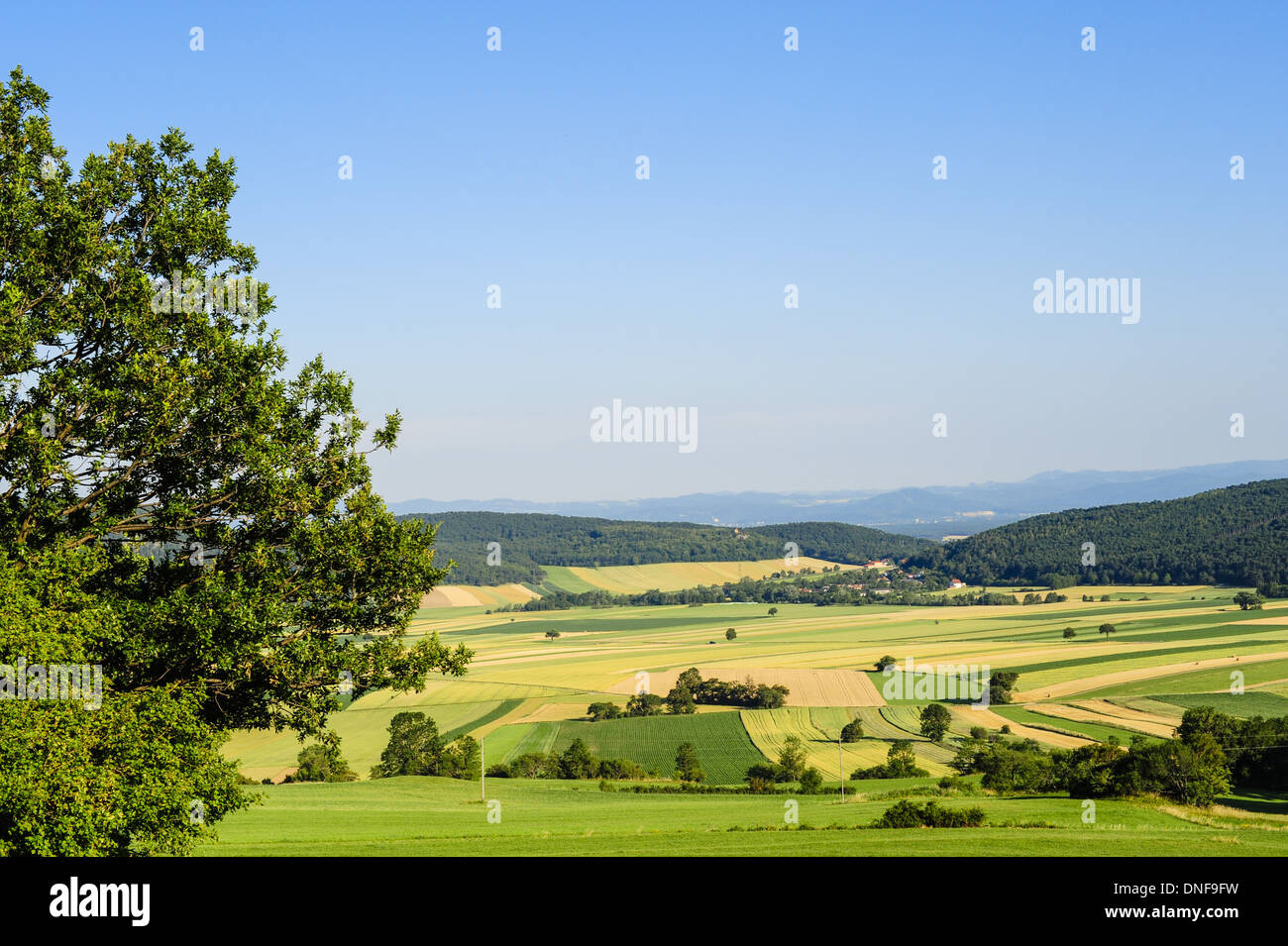 valley Neue Welt, Austria, Lower Austria, Southern Lower Austria, mountain Hohe Wand - Stock Image