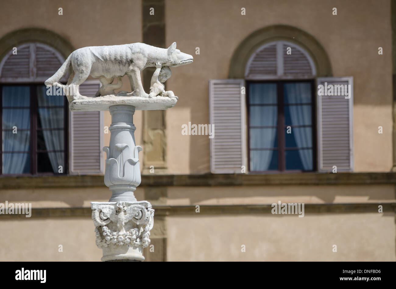 a view of a sculpture of she-wolf feeding romul and remus in siena of tuscany in italy - Stock Image
