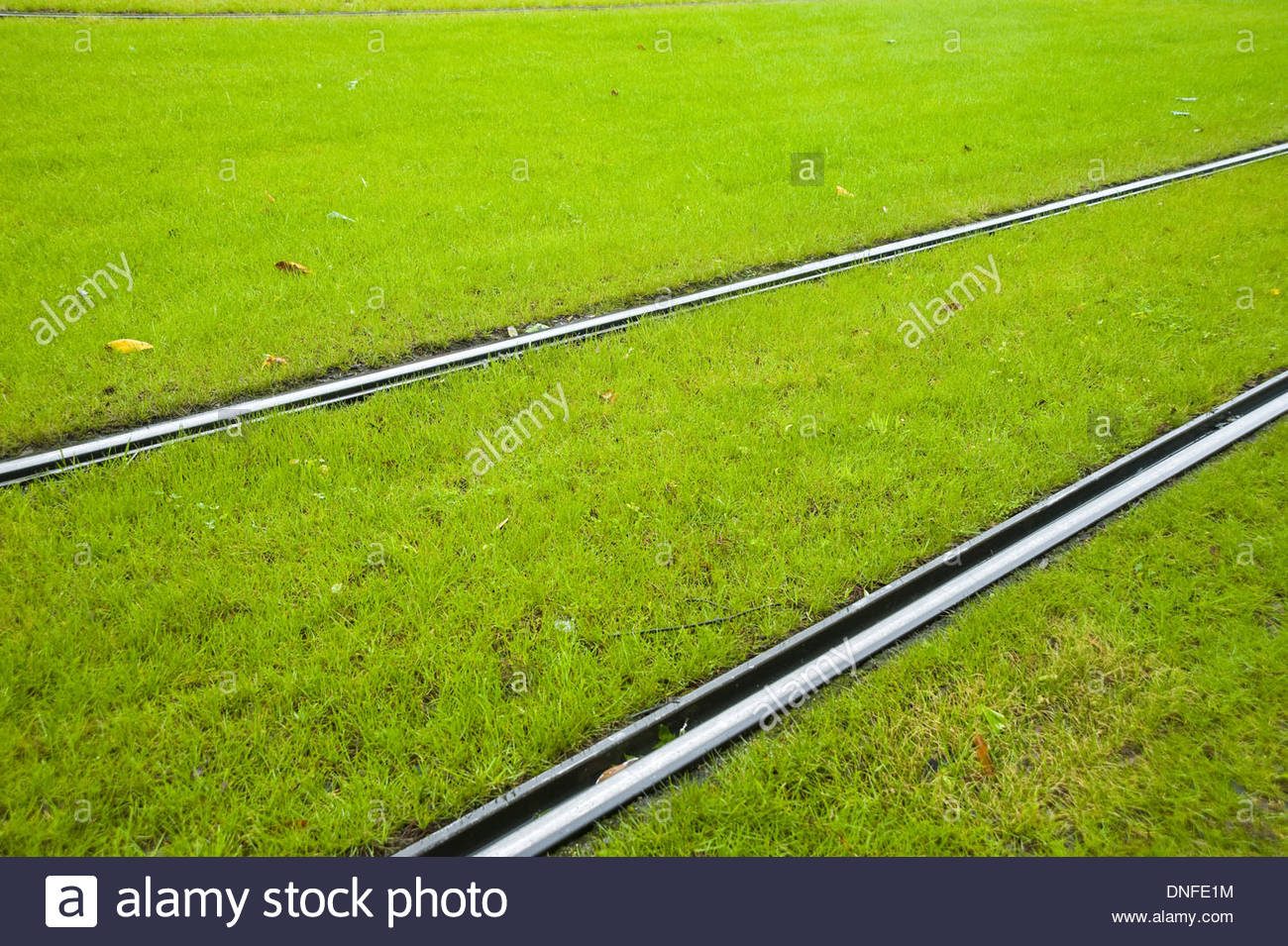 Strasbourg, Tramway, Rasengleis, Lawn Track - Stock Image