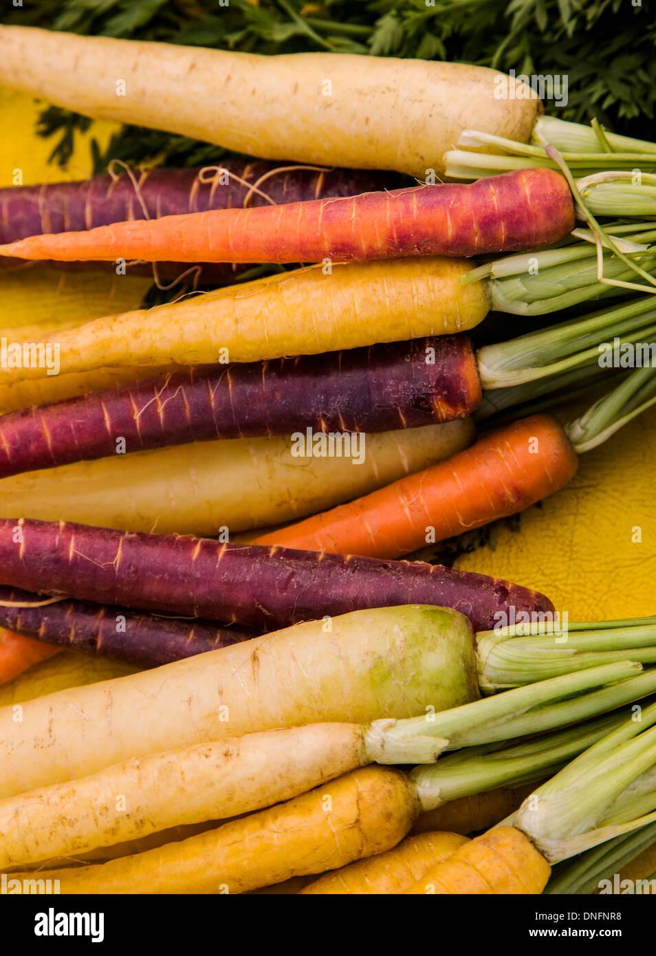 Variety of colorful carrots for sale, Buena Vista, Colorado, Farmer's Market - Stock Image