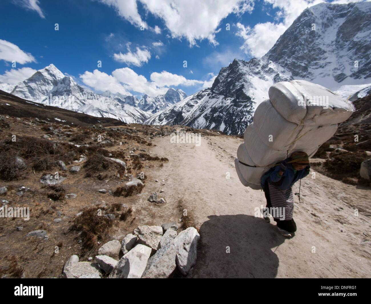 A Sherpa porter carries a large load uphill near Lobuche, Everest Base Camp Trek, Khumbu Region, Nepal. - Stock Image