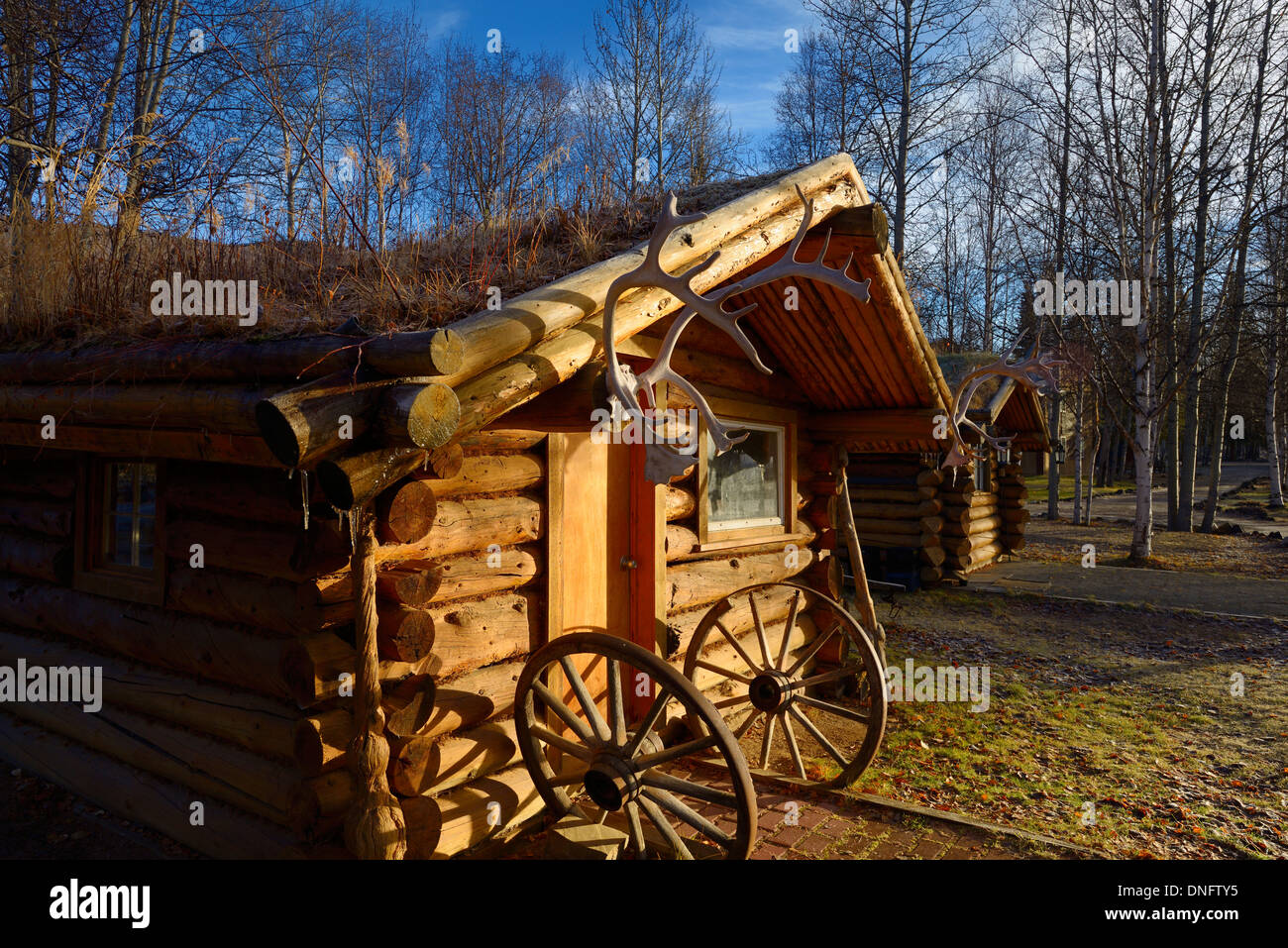 Log cabin with sod roof and caribou antlers at Chena Hot Springs Resort Alaska USA - Stock Image