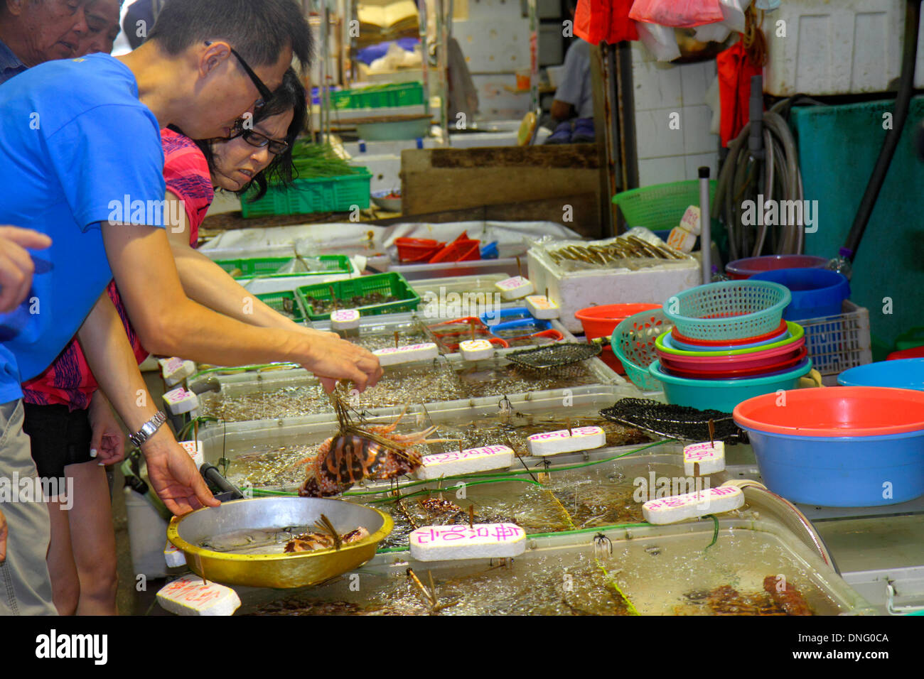 Hong Kong China Island North Point Java Road North Point Ferry Pier fish vendor monger live seafood tanks sale display selling A - Stock Image