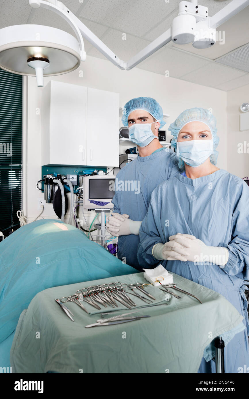 Veterinarian Surgeons In Operating Room - Stock Image