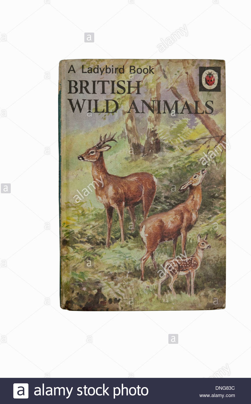 An old copy of the Ladybird book British Wild Animals a natural history book Stock Photo