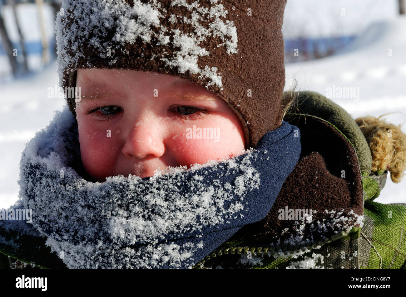 A 20 moth old baby boy crying after falling face first into snow (and dad was mean enough to shoot first and console after) - Stock Image