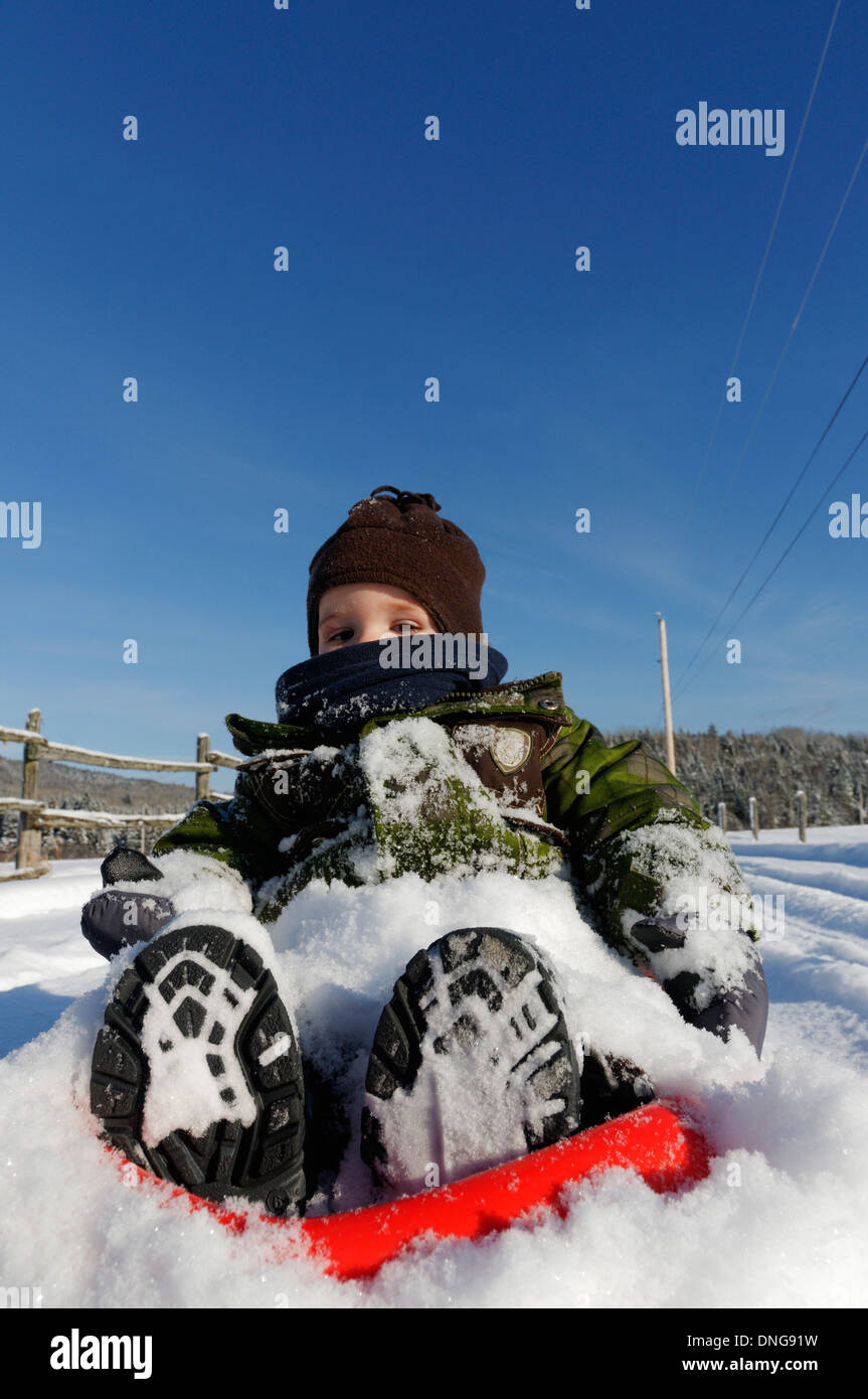 A 20 month old baby boy on a sledge - Stock Image