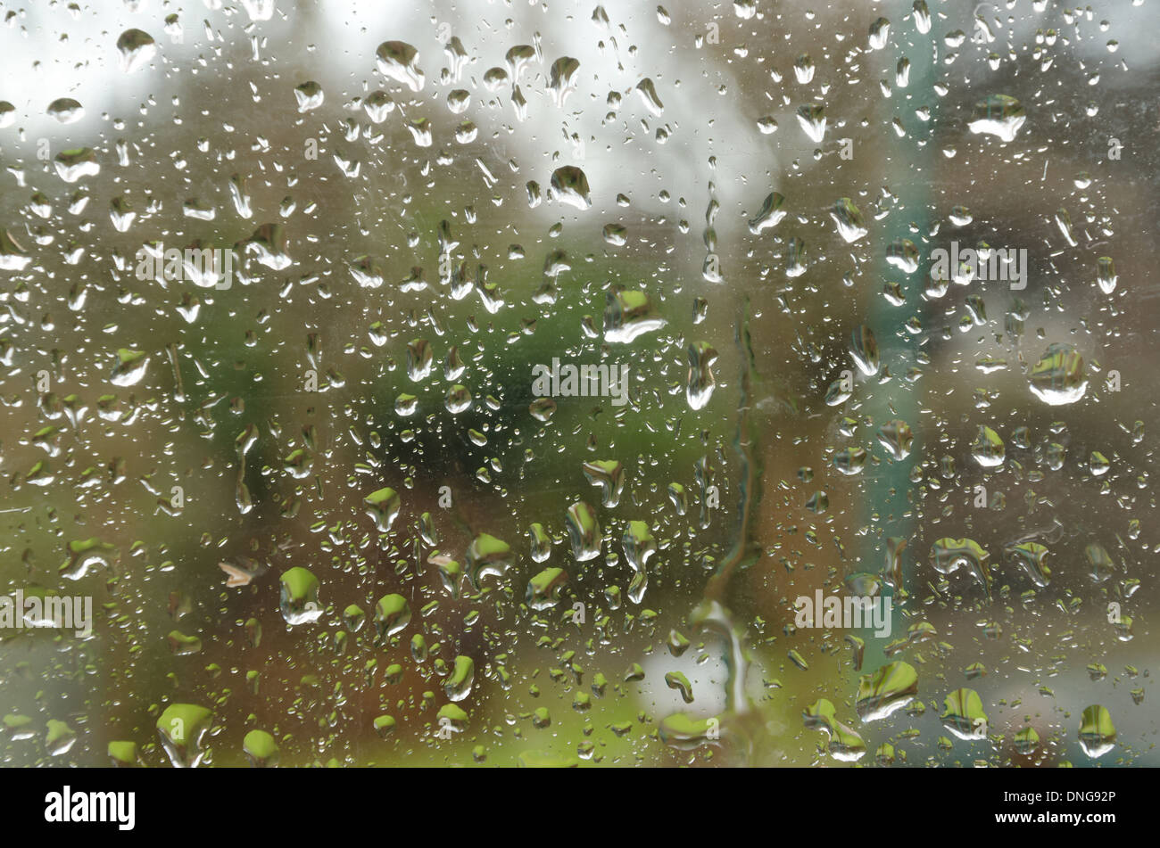 Trapped inside on a windy bleak rainy day in autumn or winter with no leaves on trees window raindrops view bleak weather - Stock Image