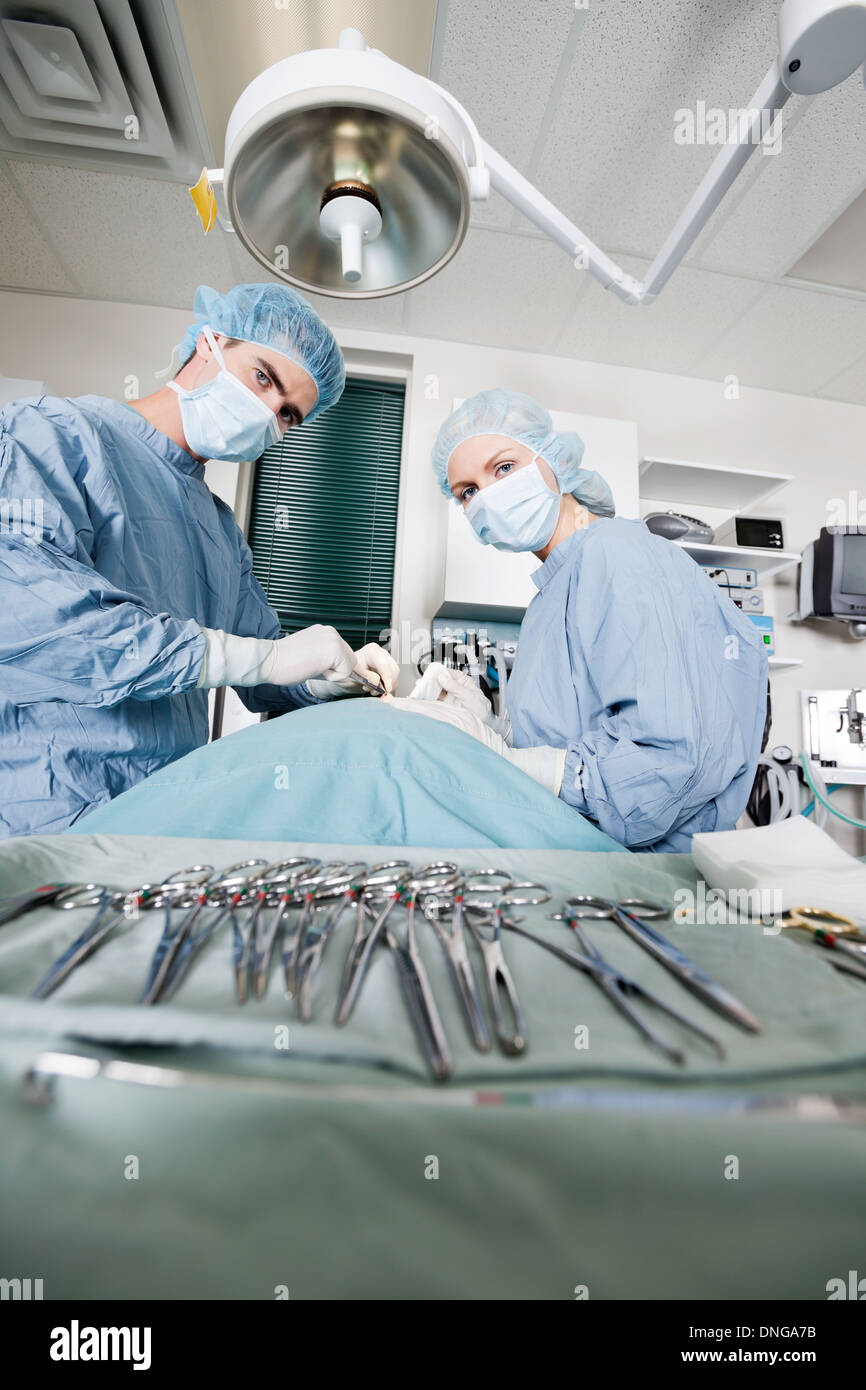 Veterinarian Doctors Performing Surgery At Clinic - Stock Image
